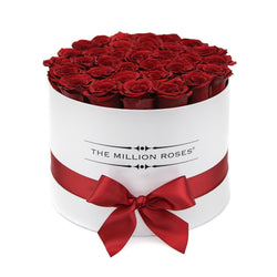 Medium - Red Eternity Roses - White Box - The Million Roses Slovakia