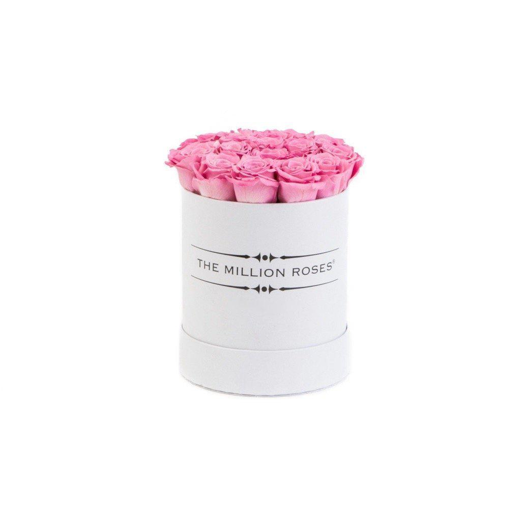 The Million Basic - Candy Pink Roses - White Box - The Million Roses Slovakia