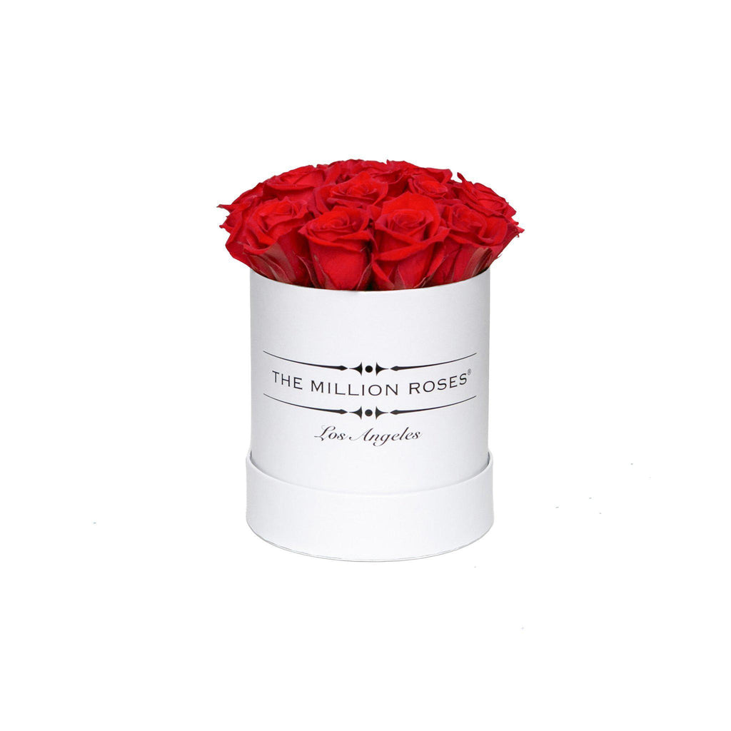 The Million Basic - Red Roses - White Box