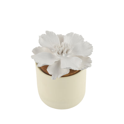Peony Bloomster Pot Clay Diffuser - HYSSES
