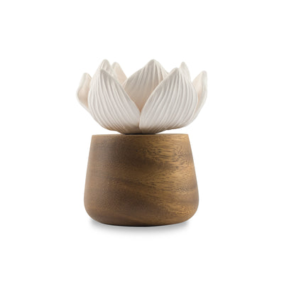 Lotus Flower Refreshment Scenting Clay - HYSSES
