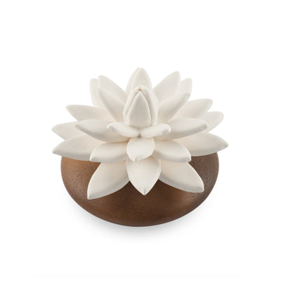 Water Lily Succulent Scenting Clay - HYSSES
