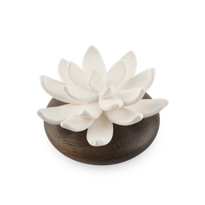 Succulent Diffuser Scenting Clay Pathum - HYSSES
