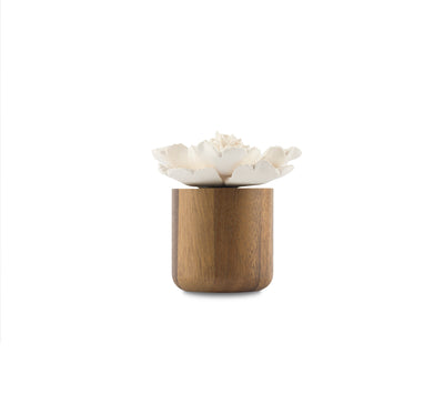 Anemone Flower Scenting Clay Diffuser (Tall Bouquet) - HYSSES