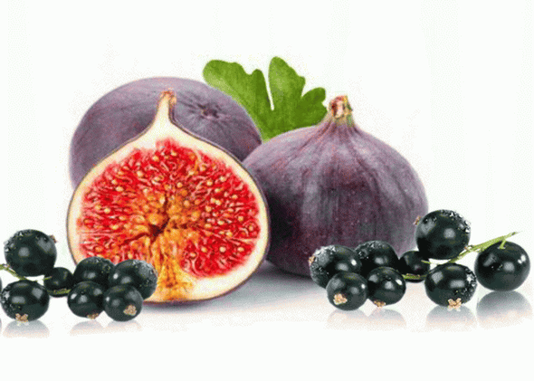 Fig-Cassis_S228A0AZS8OZ.png