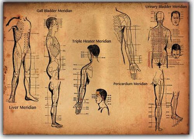 Human-Acupuncture-Points-Art-Wall-Decor-Silk-Print-Poster_S8IEFK3N64VP.jpg