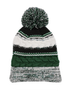 FlyQuest Winter Pom Beanie