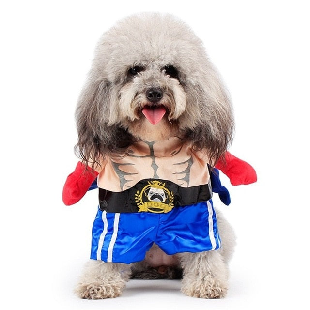 Funny Dog Cat Costumes Boxer Cosplay Suit Pet Clothing Halloween Christmas Uniform Clothes For Puppy Dogs Costume for a cat