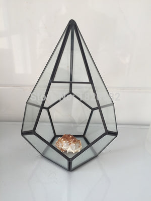 Glass Terrarium Air Plant Pot