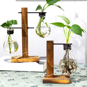 Wood and Glass Tabletop Plant Vase