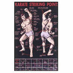 "Poster Karate Striking, Pressure Point Dim Mak Striking Points Poster. 19.5"" X 30"
