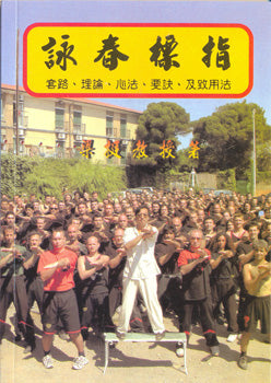 "Biu Tze - The ""Thrusting Fingers"" Set of Wing Tsun - Chinese Version"