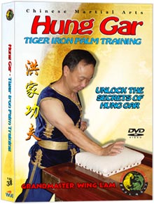 (Hung Gar DVD #38) Tiger Iron Palm Training