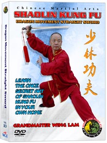 (Shaolin DVD #10) Shaolin Dragon Movement Straight Sword Chinese Traditional Shaolin Kung Fu