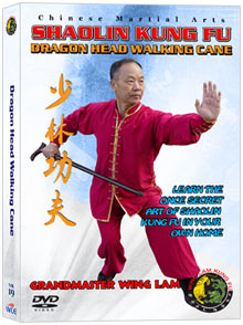 (Shaolin DVD #19) Dragon Head Walking Cane Chinese Traditional Shaolin Kung Fu