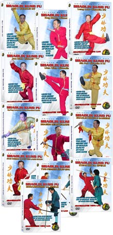 (Shaolin DVD #12-24) Shaolin Level Three - Advanced
