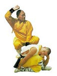 9th and 10th Famous Boxing Techniques of Shaolin