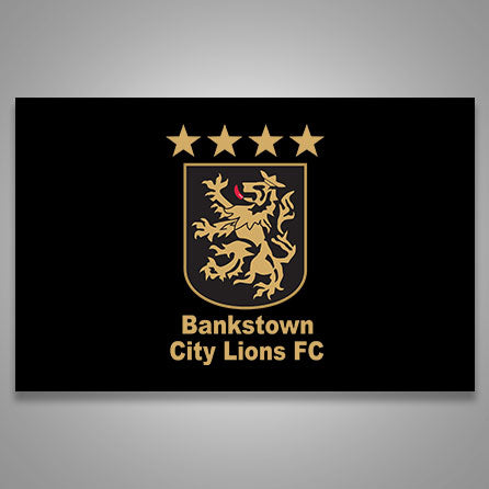 Bankstown Lions Banner