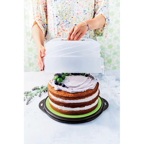 Collapsible Cake Taker