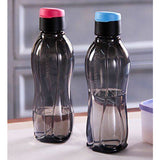 Eco Bottle 310ml