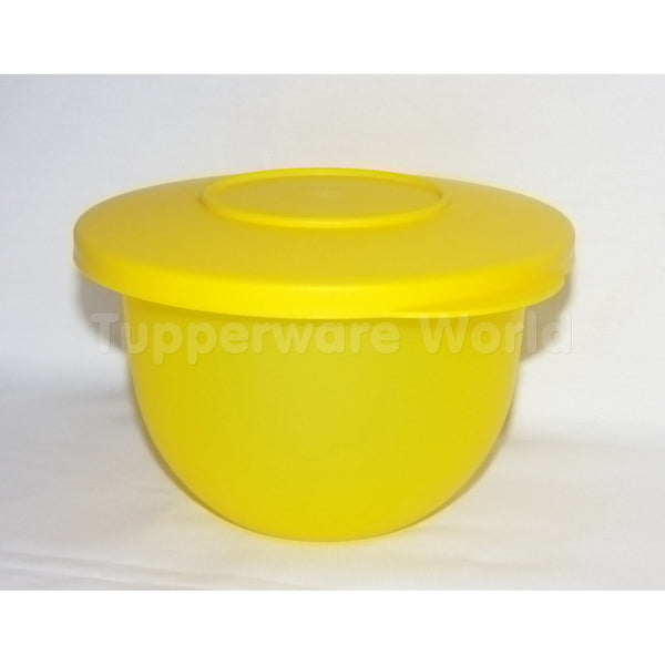 Expression Bowls 500ml