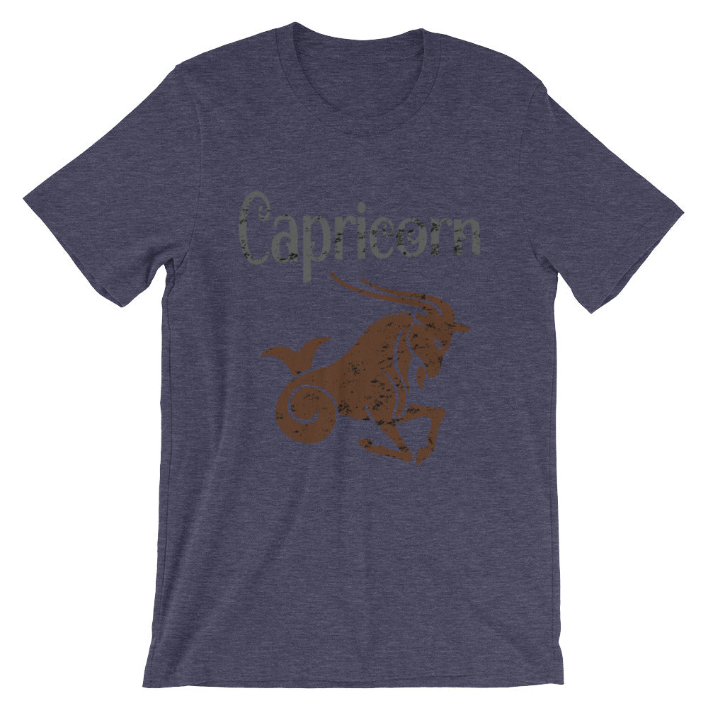 Zodiac Capricorn Astrology Sign Horoscope T Shirt Capricorn Zodiac Gifts for December or January Birthday