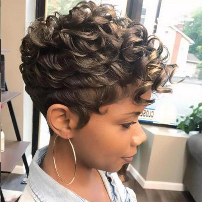 Hairsleisure Gorgeous Short Afro Curly Layered African American Brown Wig Human Hair Lace
