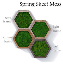 Modular Hexagons (single hex) 40 options to design your own wall