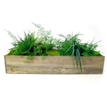Large Wooden Planter Box with Preserved Moss and Ferns - No Watering