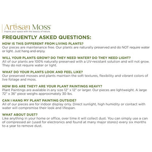 faq for artisan moss