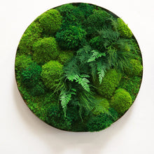 "Moss and Ferns in 24""+/- Whisky Round Distressed Metal Frame"