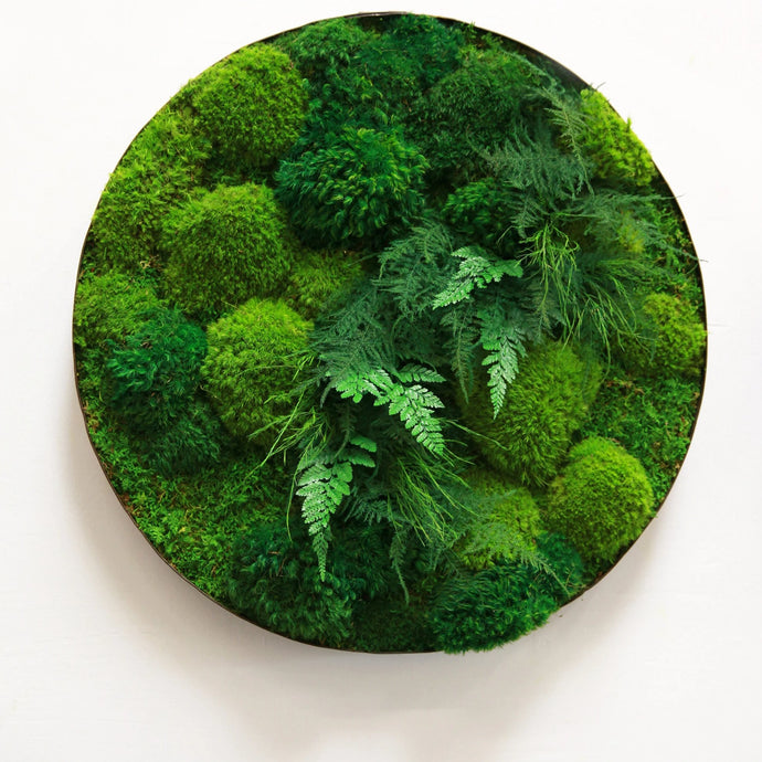 Moss and Ferns in Whisky Round Distressed Metal Frame