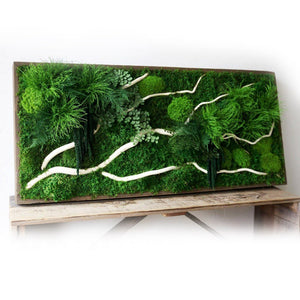 large moss art white winding branches and ferns