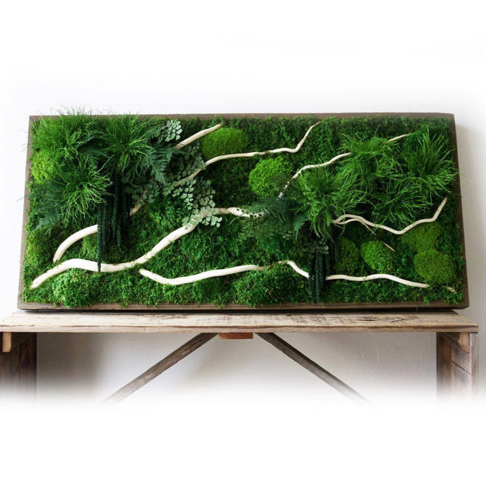 moss art white winding branches and ferns