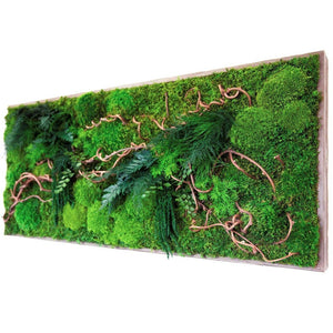 large moss art curly vine