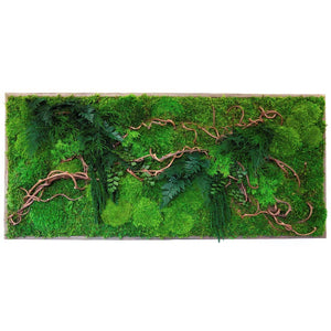 moss wall art with vines and ferns