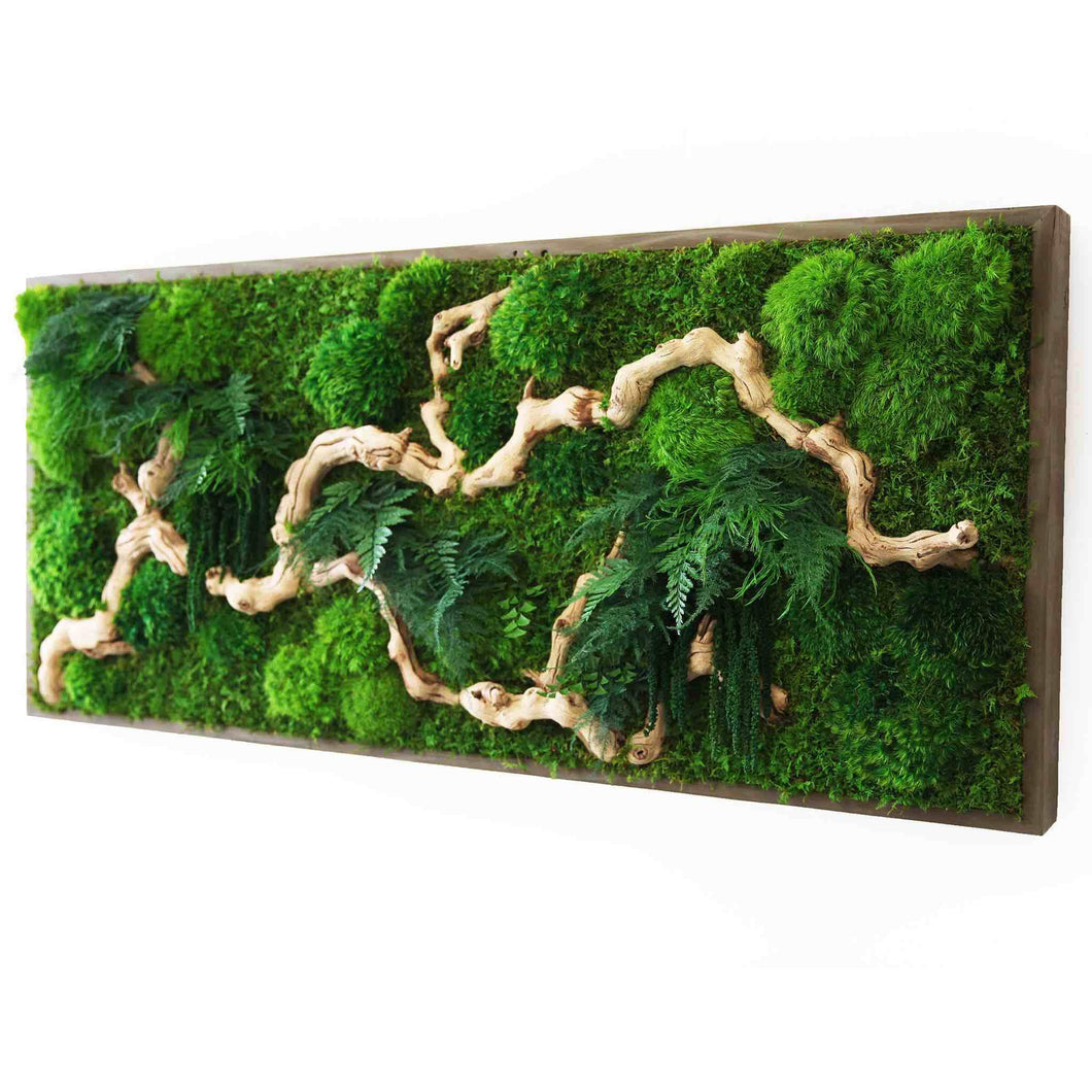 moss art with sandwood
