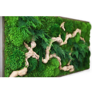 large moss art with wood