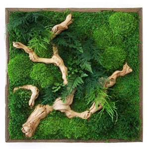 Moss art white sandwood 18x18