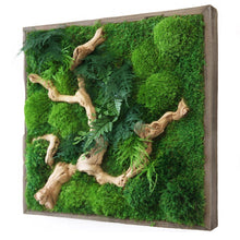 Moss Art with Sandwood in frame