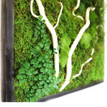moss art with white wood branches