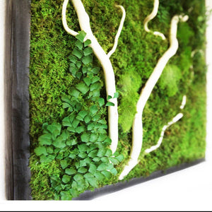 moss art with white wood branch