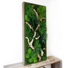 Moss Art, ferns & Sandwood Branch