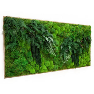 "Moss Art, White Branches & Ferns 70"" X 36"""