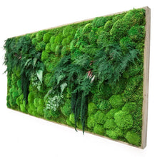 "Large Moss Art, White Branches & Ferns 70"" X 36"""