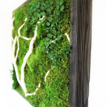 moss art with white wood