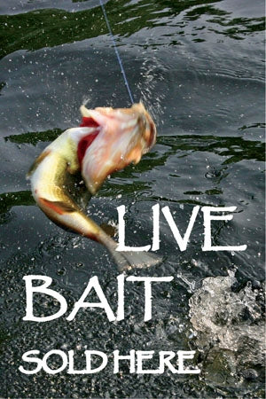 "Reusable Static Cling- ""Live Bait"""