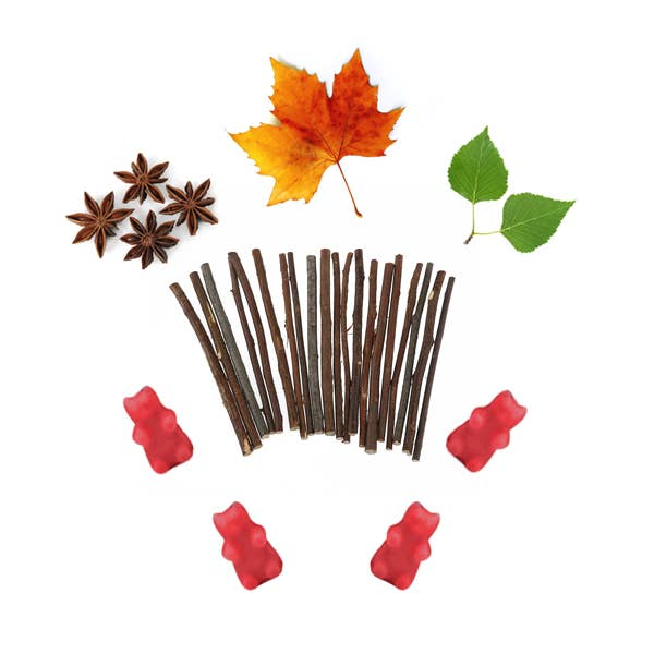 Fall Woods Wax Melts