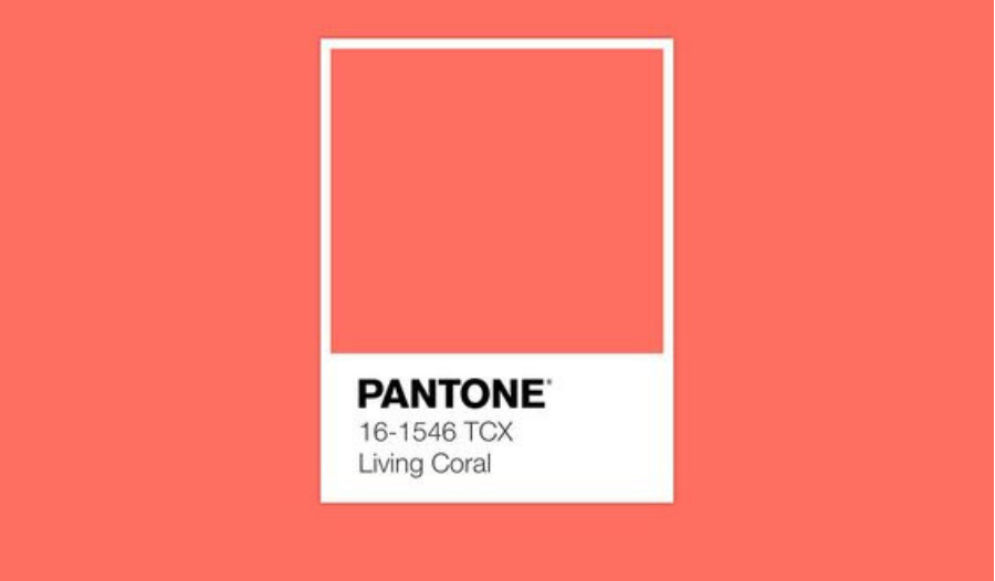 Vibing Off That Pantone, Living Coral