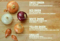 A picture of various types of onions with text explaining each one.